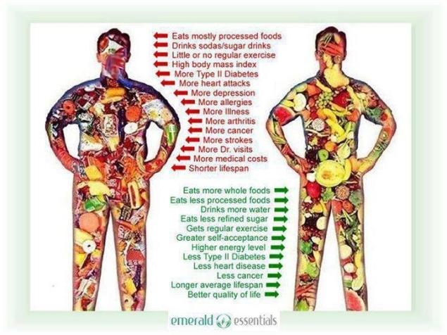 Food Resources:Healthy Eating Habits u00ab Chestnut ESL/EFL