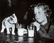 Milk Buddies( source: allposters.com)