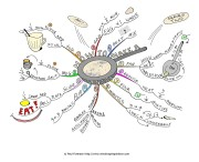 how-to-make-a-pancake-mindmap