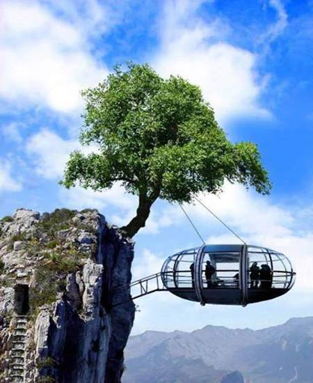 cliff hanging observation room suspended by cable to overhanging tree