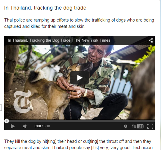 In Thailand, tracking the dog trade- Video with transcript (SOURCE: mythatsenglish.blogspot.gr)